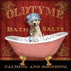 """Knutsen-""""Old Time Bath"""".Artistic canvas print on woodframe with Retriever Dog bathing image"""