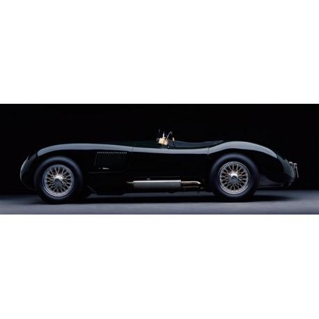 1951 Jaguar C-Type,Don Heiny,Quadro Pronto Artigianale con Stampa HQ Fine Art per Soggiorno, Ufficio o altro