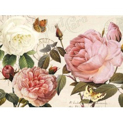 "Donovan""Botanical Sonata 1""-Shabby-New Country style Stretched Canvas with roses"