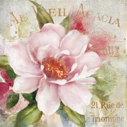 "Robinson""Parfum de Paris 1"". Amazing Home Decor Flower, Ready to Hang Picture in White and Pink"