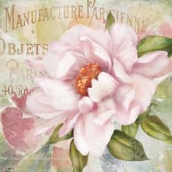 "Robinson""Parfum de Paris 2""quadri moderni rose 100x100 o altre misure pronti da appendere"