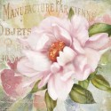 """Robinson""""Parfum de Paris 2"""". Amazing Home Decor Flower, Ready to Hang Picture in White and Pink"""