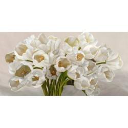 Leonardo Sanna-Tulipes Blanches.Quadro best seller in versione orizzontale con magnifico mazzo di tulipani bianchi