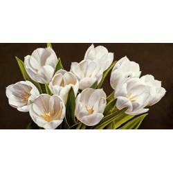 """Serena Biffi""""Bouquet di tulipani""""quadri moderni tulipani ravvicinati in misure e supporti a scelta"""