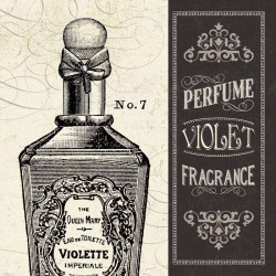 "Pela Studio""Parfum 2"" stretched canvas on 3cm high wooden frame with antique parfum image"