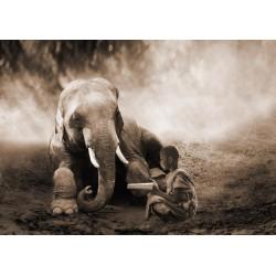 """Marc Moreau """"Together"""" Art Poster,Canvas o Quadro Finito Artigianale con elefante e bambino"""