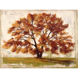 """Leonardo Bacci """"Mattino"""" -immagine best seller d'Autore con maestoso albero in bianco nero e avorio"""