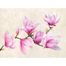 """Luca Villa """"Ramo di Magnolia"""" -fascinosa immagine best seller d'Autore in misure varie, anche molto grandi"""