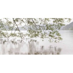 "Danita Delimont ""Lake Crescent Rainy Day"" quadro bianco con vista sul lago"