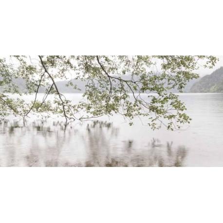 """Danita Delimont """"Lake Crescent Rainy Day"""" quadro bianco con vista sul lago"""