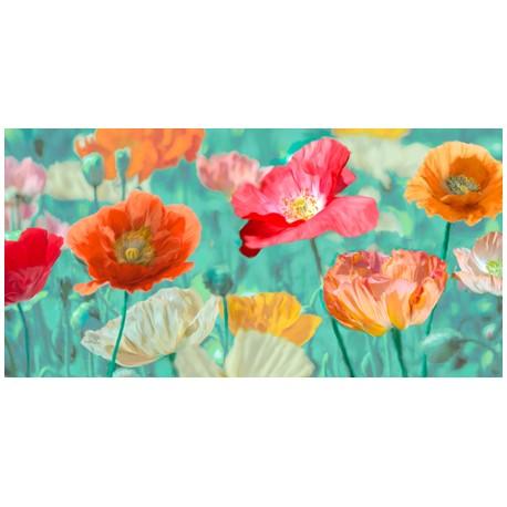 Chyntia Ann- Poppies in bloom Quadro moderno con meravigliosi fiori  multicolore. HQ anche grandi dimensioni