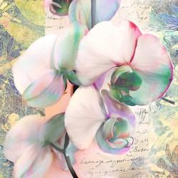 "Kelly Parr ""Orchid"" (detail) Quadro shabby con orchidee, supporti e misure a scelta"