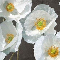 "Leonardo Sanna ""White Poppies 1"", white poppies art picture on a black base, 1 of a serie of 2"