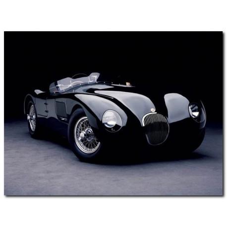 """""""Jaguar C-Type""""Don Heiny,Quadro Pronto con Stampa Fine Art per Soggiorno, Ufficio o altro"""