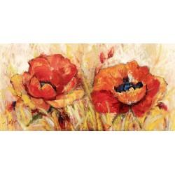 Florio Luigi - Poppies