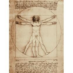 """Leonardo Da Vinci""""Uomo Vitruviano""""-Quadro Pronto con Canvas Originale ad Alta Risoluzione"""