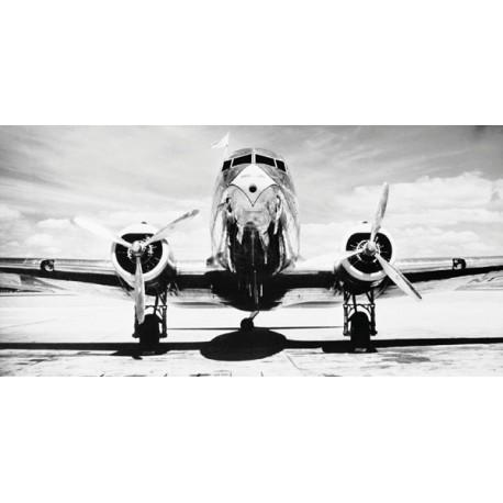 "Philip Gendreau ""Passenger Airplane on Runway"""