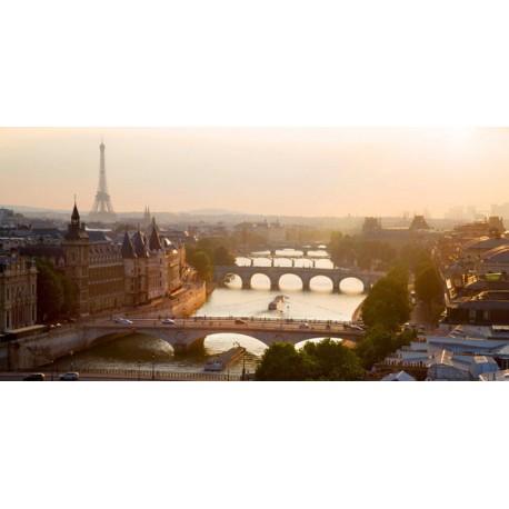 Bridges over the Seine River,Parigi. High quality Print