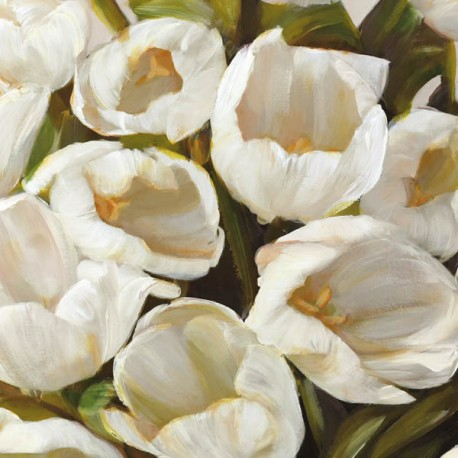 Bianco I- jenny Thomslinson White Tulips on high quality print