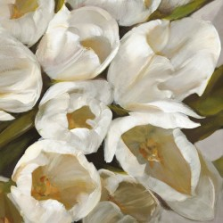 Bianco II- jenny Thomslinson White Tulips on high quality print