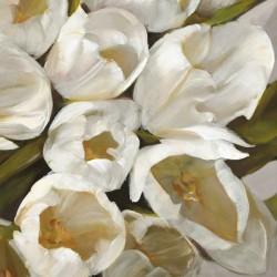 Bianco II- Leonardo Sanna Quadro con Tulipani Bianchi Romantici - Stampa d'Autore su Tela Cotone per Soggiorno o altro