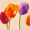 Tulip & Colors -Luca Villa Quadro con Tulipani colorati allegri - Stampa d'Autore su Tela Cotone per Soggiorno o altro