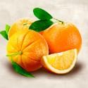 Oranges - Remo Barbieri. Quadro con sgargianti Arance in primo piano - Stampa d'Autore su Tela Cotone per Soggiorno o altro