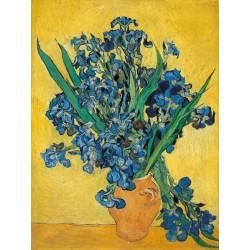 """Vincent Van Gogh""""iris""""-Stampa ad Alta Risoluzione su Supporti Diversi con Misure a Scelta"""