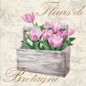 Dellal Remy - Fleurs de Bretagne Quadro con Rose Bianche Romantiche - Stampa d'Autore su Tela Cotone per Soggiorno o altro