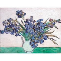 "Van Gogh ""Irises I"""