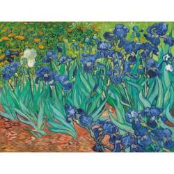 """Vincent Van Gogh""""Iris II""""-Stampa ad Alta Risoluzione su Supporti Diversi con Misure a Scelta"""