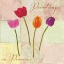"""Dellal Remy """"Printemps en Provence""""-Quadro con Rose Bianche Romantiche - Stampa d'Autore su Tela Cotone per Soggiorno o altro"""
