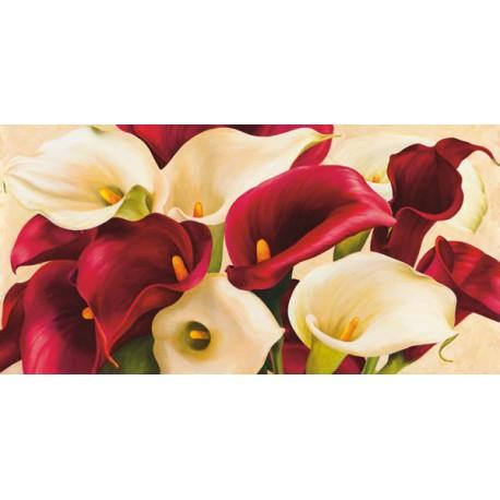 Composizione di Calle - Serena Biffi. Quadro Stampa Alta Risoluzione con Rose Bianche e Rosse